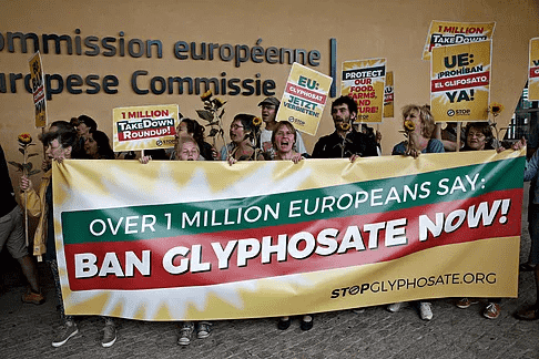 The Dangers of Glyphosate